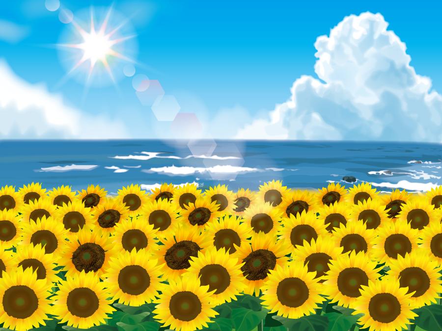 フリーイラスト ひまわりの花と夏の海の風景
