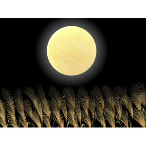 フリーイラスト, ベクター画像, AI, 背景, 9月, お月見(観月), 月, 満月, 夜, 植物, 薄(ススキ), 十五夜(中秋の名月), 年中行事