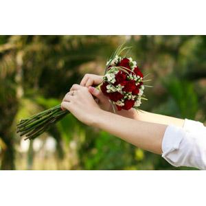 フリー写真, 人体, 手, 植物, 花, ブーケ, 薔薇(バラ)