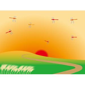 フリーイラスト, ベクター画像, AI, 風景, 夕暮れ(夕方), 夕焼け, 夕日, 日の入り, 薄(ススキ), 昆虫, とんぼ(トンボ), 赤とんぼ(赤トンボ), 丘