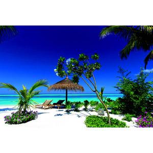 フリー写真, 風景, ビーチ(砂浜), 海, 青空, デッキチェア, モルディブの風景, ビーチパラソル