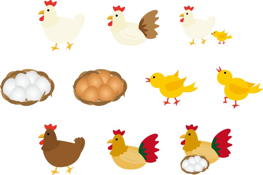フリーイラスト 鶏とひよこと卵のセット