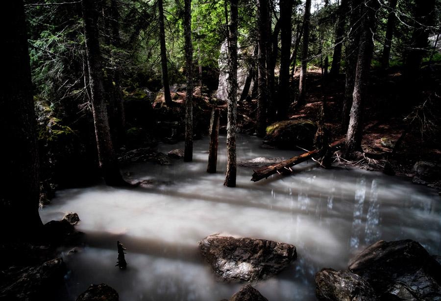 フリー写真 森の中の小川の風景