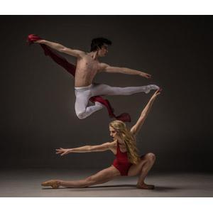 フリー写真, 人物, カップル, バレエ, バレリーナ, 踊る(ダンス), 手を広げる, 跳ぶ(ジャンプ), 二人