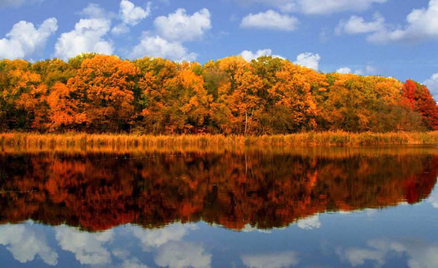 フリー写真 湖に映る紅葉した森の木々の風景