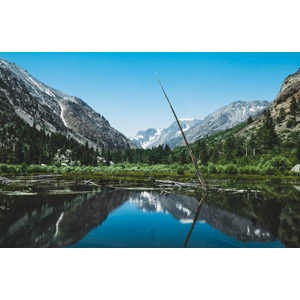 フリー写真, 風景, 自然, 池, 倒木, 山, 渓谷, ランディー・キャニオン, アメリカの風景, カリフォルニア州