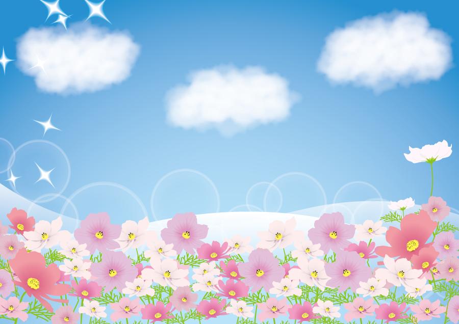 フリーイラスト コスモス畑と雲の浮かぶ青空の背景