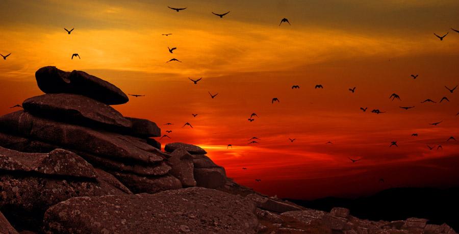 フリー写真 夕焼けに染まる露頭と鳥の群れ