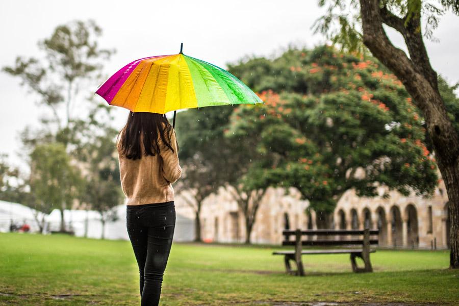 フリー写真 雨の公園で傘を差す女性の後ろ姿