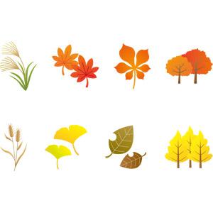 フリーイラスト, ベクター画像, AI, 植物, 葉っぱ, もみじ(カエデ), 紅葉(黄葉), 秋, イチョウ, 落葉(落ち葉), 薄(ススキ), エノコログサ, トチノキ, 樹木