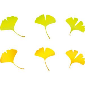 フリーイラスト, ベクター画像, AI, 植物, 葉っぱ, イチョウ, 紅葉(黄葉), 秋