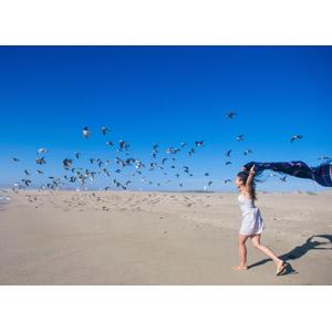 フリー写真, 人物, 女性, アジア人女性, 人と風景, 人と動物, 動物, 鳥類, 鳥(トリ), 鴎(カモメ), 群れ, ビーチ(砂浜)