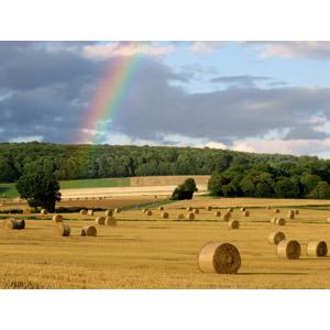 フリー写真, 風景, 牧草地, 干し草ロール, 田舎, 虹